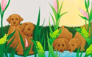 ilustrar livros infantis